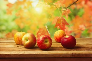 Fall_Background_with_Apples