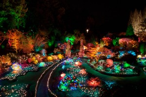 butchart_gardens_christmas_lights_by_zikrostag-d4l81vz